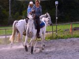 Equitation Western